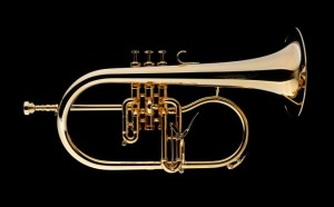 Fluegelhorn_James_Morrison